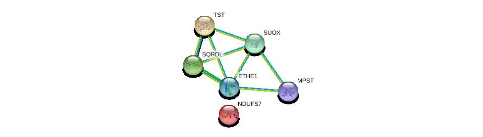 http://string-db.org/version_10/api/image/networkList?limit=0&targetmode=proteins&caller_identity=gene_cards&network_flavor=evidence&identifiers=9606.ENSP00000292147%0d%0a9606.ENSP00000260324%0d%0a9606.ENSP00000266971%0d%0a9606.ENSP00000380318%0d%0a9606.ENSP00000249042%0d%0a9606.ENSP00000233627%0d%0a
