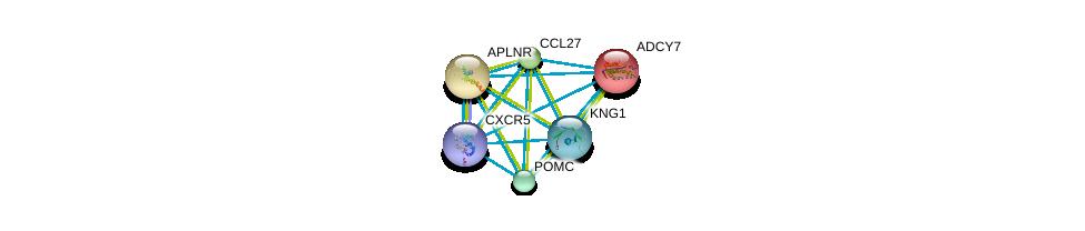 http://string-db.org/version_10/api/image/networkList?limit=0&targetmode=proteins&caller_identity=gene_cards&network_flavor=evidence&identifiers=9606.ENSP00000292174%0d%0a9606.ENSP00000254235%0d%0a9606.ENSP00000264708%0d%0a9606.ENSP00000265023%0d%0a9606.ENSP00000259631%0d%0a9606.ENSP00000257254%0d%0a