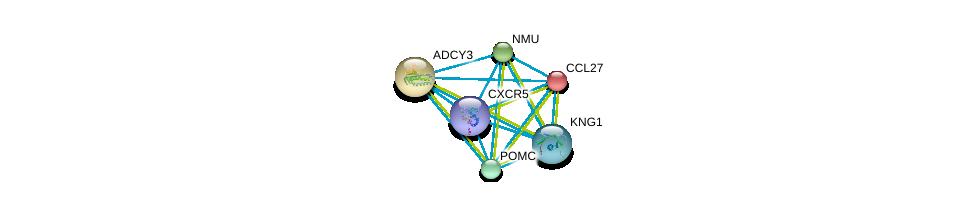http://string-db.org/version_10/api/image/networkList?limit=0&targetmode=proteins&caller_identity=gene_cards&network_flavor=evidence&identifiers=9606.ENSP00000292174%0d%0a9606.ENSP00000260600%0d%0a9606.ENSP00000264218%0d%0a9606.ENSP00000264708%0d%0a9606.ENSP00000259631%0d%0a9606.ENSP00000265023%0d%0a