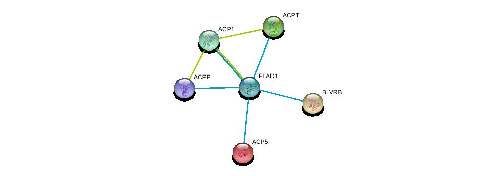 http://string-db.org/version_10/api/image/networkList?limit=0&targetmode=proteins&caller_identity=gene_cards&network_flavor=evidence&identifiers=9606.ENSP00000292180%0d%0a9606.ENSP00000218758%0d%0a9606.ENSP00000263368%0d%0a9606.ENSP00000270593%0d%0a9606.ENSP00000272065%0d%0a9606.ENSP00000323036%0d%0a