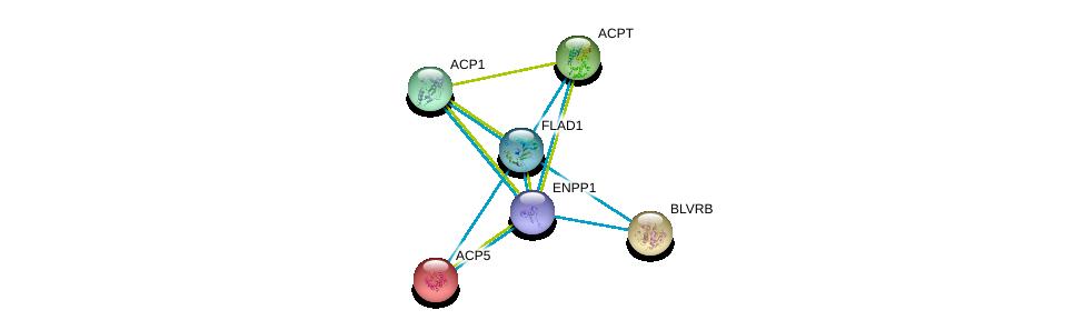 http://string-db.org/version_10/api/image/networkList?limit=0&targetmode=proteins&caller_identity=gene_cards&network_flavor=evidence&identifiers=9606.ENSP00000292180%0d%0a9606.ENSP00000354238%0d%0a9606.ENSP00000272065%0d%0a9606.ENSP00000218758%0d%0a9606.ENSP00000270593%0d%0a9606.ENSP00000263368%0d%0a