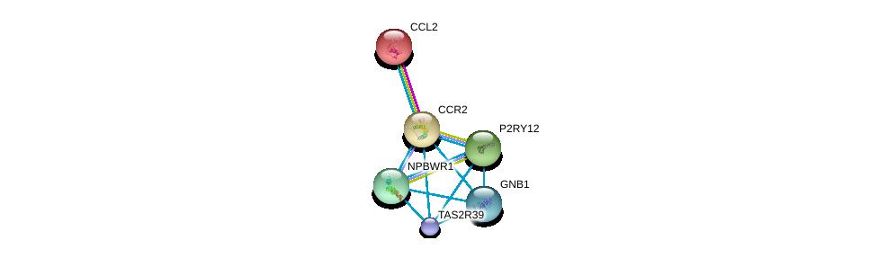 http://string-db.org/version_10/api/image/networkList?limit=0&targetmode=proteins&caller_identity=gene_cards&network_flavor=evidence&identifiers=9606.ENSP00000292301%0d%0a9606.ENSP00000225831%0d%0a9606.ENSP00000307259%0d%0a9606.ENSP00000405095%0d%0a9606.ENSP00000367869%0d%0a9606.ENSP00000330284%0d%0a