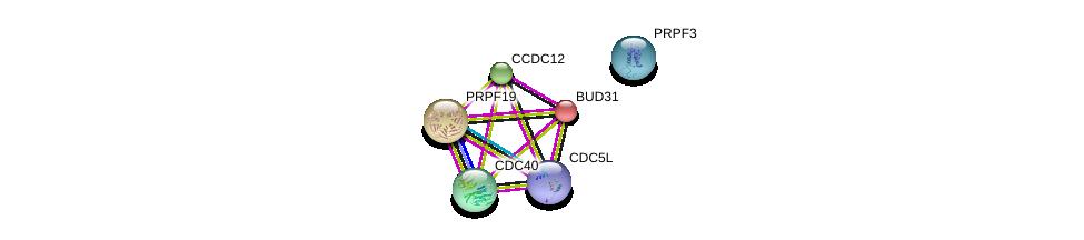 http://string-db.org/version_10/api/image/networkList?limit=0&targetmode=proteins&caller_identity=gene_cards&network_flavor=evidence&identifiers=9606.ENSP00000292314%0d%0a9606.ENSP00000304370%0d%0a9606.ENSP00000222969%0d%0a9606.ENSP00000360532%0d%0a9606.ENSP00000227524%0d%0a9606.ENSP00000315379%0d%0a