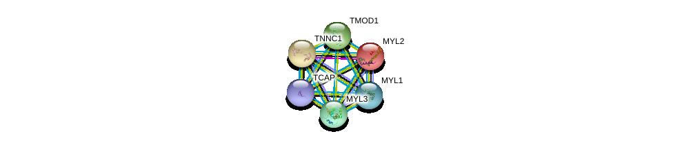 http://string-db.org/version_10/api/image/networkList?limit=0&targetmode=proteins&caller_identity=gene_cards&network_flavor=evidence&identifiers=9606.ENSP00000292327%0d%0a9606.ENSP00000259365%0d%0a9606.ENSP00000307280%0d%0a9606.ENSP00000312624%0d%0a9606.ENSP00000232975%0d%0a9606.ENSP00000228841%0d%0a