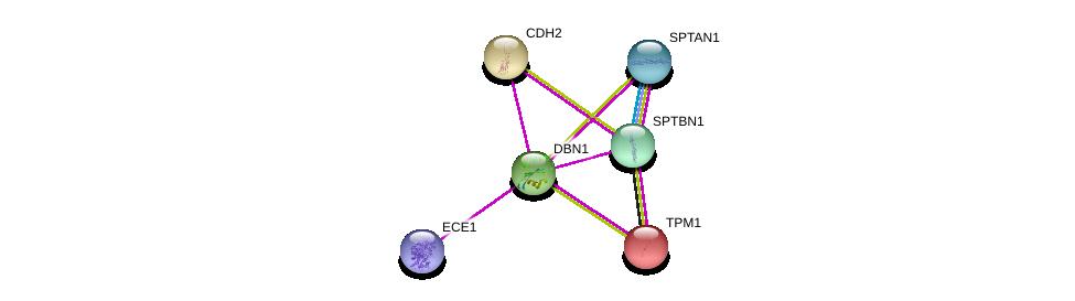 http://string-db.org/version_10/api/image/networkList?limit=0&targetmode=proteins&caller_identity=gene_cards&network_flavor=evidence&identifiers=9606.ENSP00000292385%0d%0a9606.ENSP00000349259%0d%0a9606.ENSP00000269141%0d%0a9606.ENSP00000364028%0d%0a9606.ENSP00000267996%0d%0a9606.ENSP00000361824%0d%0a