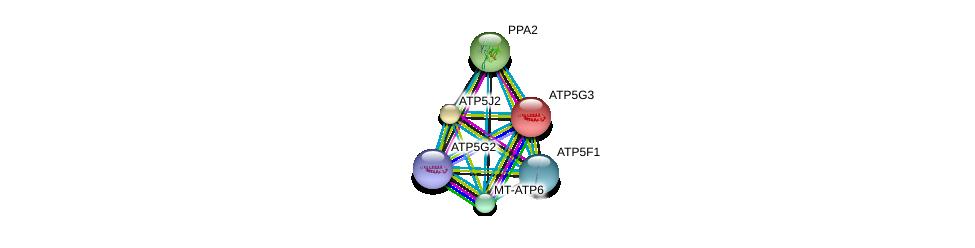 http://string-db.org/version_10/api/image/networkList?limit=0&targetmode=proteins&caller_identity=gene_cards&network_flavor=evidence&identifiers=9606.ENSP00000292475%0d%0a9606.ENSP00000358737%0d%0a9606.ENSP00000343885%0d%0a9606.ENSP00000284727%0d%0a9606.ENSP00000354632%0d%0a9606.ENSP00000377878%0d%0a