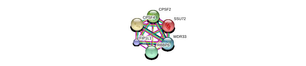 http://string-db.org/version_10/api/image/networkList?limit=0&targetmode=proteins&caller_identity=gene_cards&network_flavor=evidence&identifiers=9606.ENSP00000292476%0d%0a9606.ENSP00000336752%0d%0a9606.ENSP00000317872%0d%0a9606.ENSP00000291386%0d%0a9606.ENSP00000325377%0d%0a9606.ENSP00000298875%0d%0a