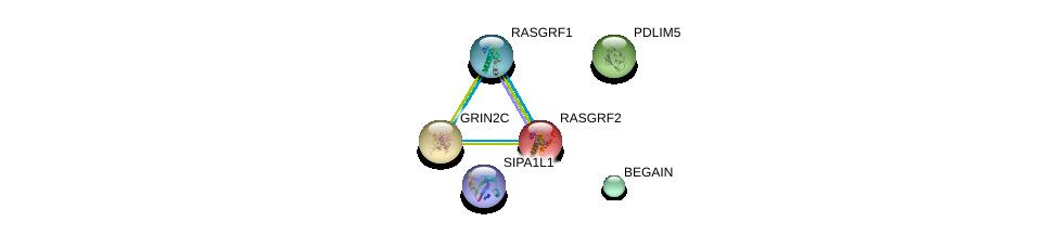 http://string-db.org/version_10/api/image/networkList?limit=0&targetmode=proteins&caller_identity=gene_cards&network_flavor=evidence&identifiers=9606.ENSP00000293190%0d%0a9606.ENSP00000265080%0d%0a9606.ENSP00000405963%0d%0a9606.ENSP00000321746%0d%0a9606.ENSP00000347301%0d%0a9606.ENSP00000450832%0d%0a