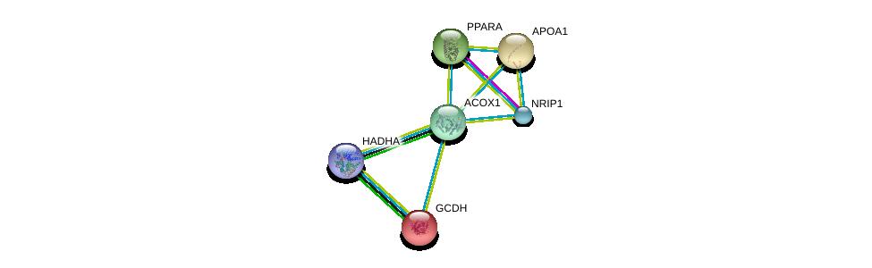 http://string-db.org/version_10/api/image/networkList?limit=0&targetmode=proteins&caller_identity=gene_cards&network_flavor=evidence&identifiers=9606.ENSP00000293217%0d%0a9606.ENSP00000222214%0d%0a9606.ENSP00000262735%0d%0a9606.ENSP00000236850%0d%0a9606.ENSP00000327213%0d%0a9606.ENSP00000370023%0d%0a