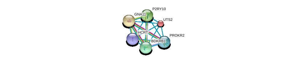 http://string-db.org/version_10/api/image/networkList?limit=0&targetmode=proteins&caller_identity=gene_cards&network_flavor=evidence&identifiers=9606.ENSP00000293330%0d%0a9606.ENSP00000054668%0d%0a9606.ENSP00000078429%0d%0a9606.ENSP00000171757%0d%0a9606.ENSP00000216629%0d%0a9606.ENSP00000217270%0d%0a