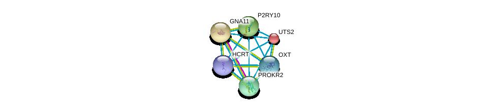 http://string-db.org/version_10/api/image/networkList?limit=0&targetmode=proteins&caller_identity=gene_cards&network_flavor=evidence&identifiers=9606.ENSP00000293330%0d%0a9606.ENSP00000054668%0d%0a9606.ENSP00000078429%0d%0a9606.ENSP00000171757%0d%0a9606.ENSP00000217270%0d%0a9606.ENSP00000217386%0d%0a
