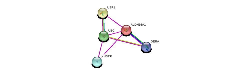 http://string-db.org/version_10/api/image/networkList?limit=0&targetmode=proteins&caller_identity=gene_cards&network_flavor=evidence&identifiers=9606.ENSP00000293350%0d%0a9606.ENSP00000344818%0d%0a9606.ENSP00000343526%0d%0a9606.ENSP00000381216%0d%0a9606.ENSP00000381216%0d%0a9606.ENSP00000416583%0d%0a