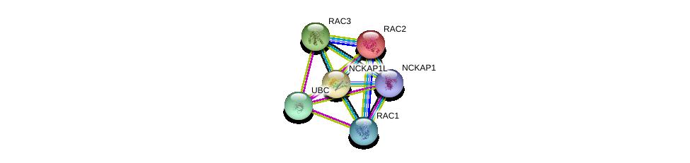 http://string-db.org/version_10/api/image/networkList?limit=0&targetmode=proteins&caller_identity=gene_cards&network_flavor=evidence&identifiers=9606.ENSP00000293373%0d%0a9606.ENSP00000344818%0d%0a9606.ENSP00000249071%0d%0a9606.ENSP00000304283%0d%0a9606.ENSP00000348461%0d%0a9606.ENSP00000354251%0d%0a