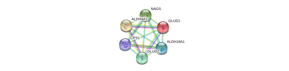 http://string-db.org/version_10/api/image/networkList?limit=0&targetmode=proteins&caller_identity=gene_cards&network_flavor=evidence&identifiers=9606.ENSP00000293404%0d%0a9606.ENSP00000277865%0d%0a9606.ENSP00000290597%0d%0a9606.ENSP00000327589%0d%0a9606.ENSP00000360268%0d%0a9606.ENSP00000402608%0d%0a
