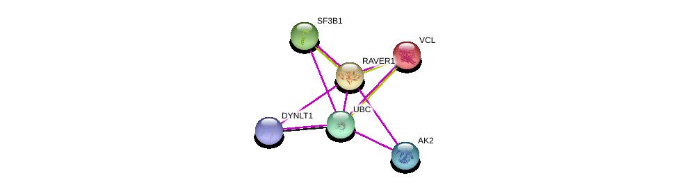 http://string-db.org/version_10/api/image/networkList?limit=0&targetmode=proteins&caller_identity=gene_cards&network_flavor=evidence&identifiers=9606.ENSP00000293677%0d%0a9606.ENSP00000211998%0d%0a9606.ENSP00000335321%0d%0a9606.ENSP00000344818%0d%0a9606.ENSP00000346921%0d%0a9606.ENSP00000356056%0d%0a
