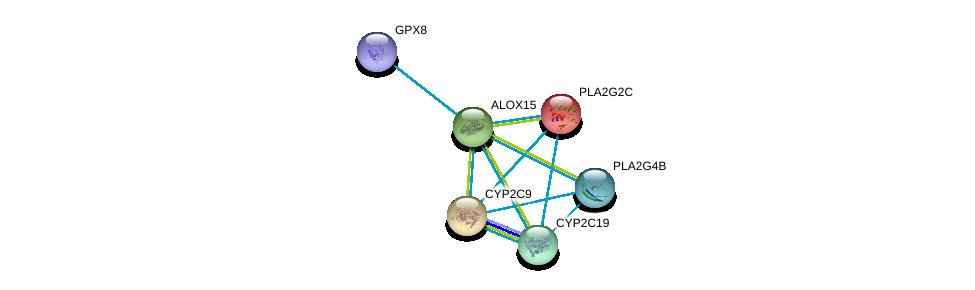 http://string-db.org/version_10/api/image/networkList?limit=0&targetmode=proteins&caller_identity=gene_cards&network_flavor=evidence&identifiers=9606.ENSP00000293761%0d%0a9606.ENSP00000247992%0d%0a9606.ENSP00000423822%0d%0a9606.ENSP00000396045%0d%0a9606.ENSP00000360372%0d%0a9606.ENSP00000260682%0d%0a