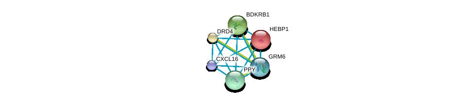 http://string-db.org/version_10/api/image/networkList?limit=0&targetmode=proteins&caller_identity=gene_cards&network_flavor=evidence&identifiers=9606.ENSP00000293778%0d%0a9606.ENSP00000014930%0d%0a9606.ENSP00000176183%0d%0a9606.ENSP00000216629%0d%0a9606.ENSP00000225992%0d%0a9606.ENSP00000231188%0d%0a