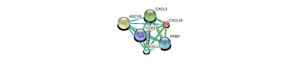http://string-db.org/version_10/api/image/networkList?limit=0&targetmode=proteins&caller_identity=gene_cards&network_flavor=evidence&identifiers=9606.ENSP00000293778%0d%0a9606.ENSP00000296026%0d%0a9606.ENSP00000296027%0d%0a9606.ENSP00000296028%0d%0a9606.ENSP00000296140%0d%0a9606.ENSP00000294016%0d%0a