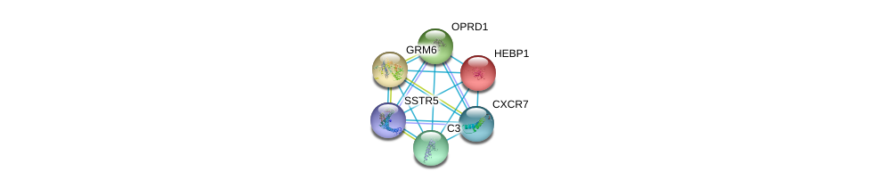 http://string-db.org/version_10/api/image/networkList?limit=0&targetmode=proteins&caller_identity=gene_cards&network_flavor=evidence&identifiers=9606.ENSP00000293897%0d%0a9606.ENSP00000272928%0d%0a9606.ENSP00000014930%0d%0a9606.ENSP00000231188%0d%0a9606.ENSP00000234961%0d%0a9606.ENSP00000245907%0d%0a