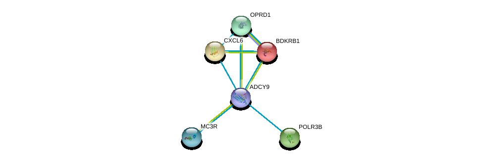 http://string-db.org/version_10/api/image/networkList?limit=0&targetmode=proteins&caller_identity=gene_cards&network_flavor=evidence&identifiers=9606.ENSP00000294016%0d%0a9606.ENSP00000216629%0d%0a9606.ENSP00000226317%0d%0a9606.ENSP00000234961%0d%0a9606.ENSP00000228347%0d%0a9606.ENSP00000243911%0d%0a