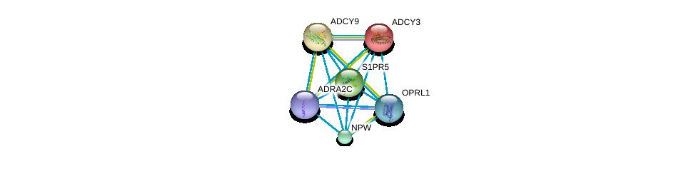 http://string-db.org/version_10/api/image/networkList?limit=0&targetmode=proteins&caller_identity=gene_cards&network_flavor=evidence&identifiers=9606.ENSP00000294016%0d%0a9606.ENSP00000386069%0d%0a9606.ENSP00000330070%0d%0a9606.ENSP00000328472%0d%0a9606.ENSP00000260600%0d%0a9606.ENSP00000336764%0d%0a