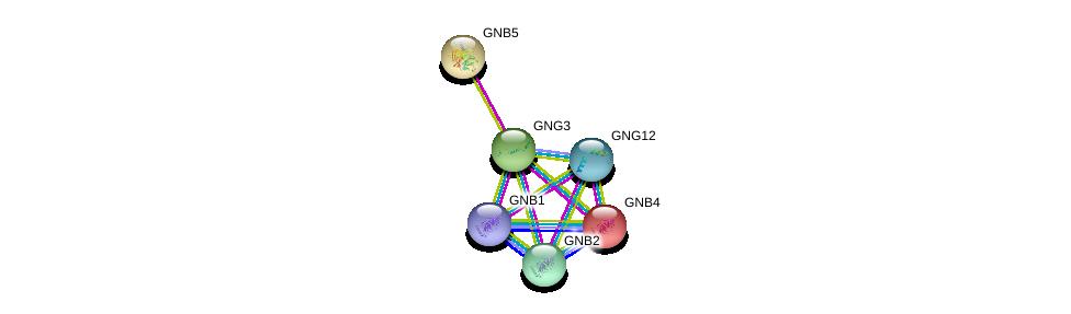 http://string-db.org/version_10/api/image/networkList?limit=0&targetmode=proteins&caller_identity=gene_cards&network_flavor=evidence&identifiers=9606.ENSP00000294117%0d%0a9606.ENSP00000232564%0d%0a9606.ENSP00000305260%0d%0a9606.ENSP00000367869%0d%0a9606.ENSP00000261837%0d%0a9606.ENSP00000360021%0d%0a