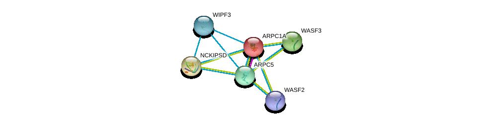 http://string-db.org/version_10/api/image/networkList?limit=0&targetmode=proteins&caller_identity=gene_cards&network_flavor=evidence&identifiers=9606.ENSP00000294129%0d%0a9606.ENSP00000396211%0d%0a9606.ENSP00000335055%0d%0a9606.ENSP00000352918%0d%0a9606.ENSP00000262942%0d%0a9606.ENSP00000386878%0d%0a