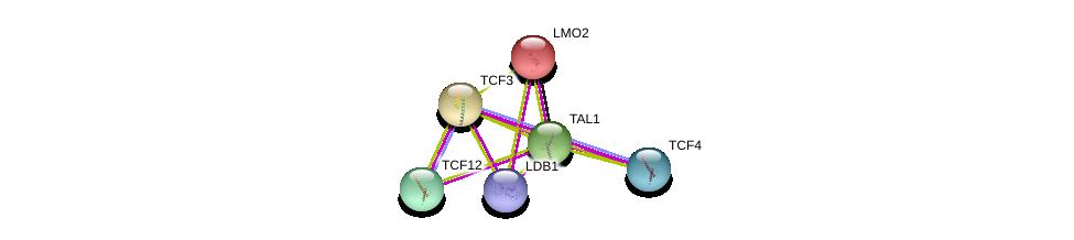 http://string-db.org/version_10/api/image/networkList?limit=0&targetmode=proteins&caller_identity=gene_cards&network_flavor=evidence&identifiers=9606.ENSP00000294339%0d%0a9606.ENSP00000257818%0d%0a9606.ENSP00000262965%0d%0a9606.ENSP00000392466%0d%0a9606.ENSP00000331057%0d%0a9606.ENSP00000346440%0d%0a