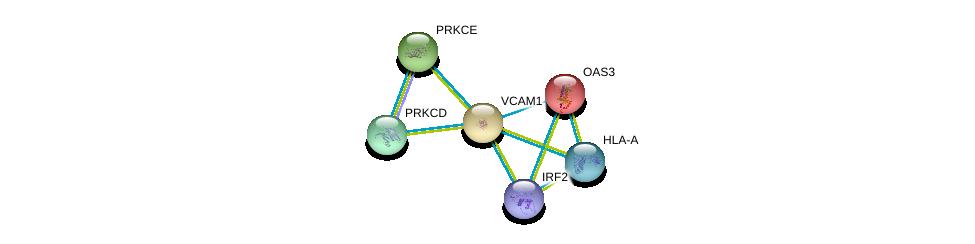 http://string-db.org/version_10/api/image/networkList?limit=0&targetmode=proteins&caller_identity=gene_cards&network_flavor=evidence&identifiers=9606.ENSP00000294728%0d%0a9606.ENSP00000228928%0d%0a9606.ENSP00000331602%0d%0a9606.ENSP00000377218%0d%0a9606.ENSP00000306124%0d%0a9606.ENSP00000366005%0d%0a