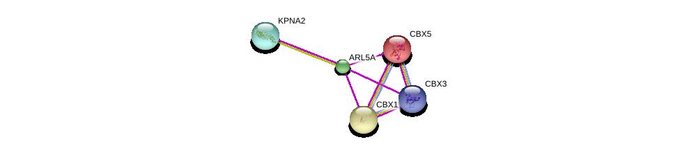 http://string-db.org/version_10/api/image/networkList?limit=0&targetmode=proteins&caller_identity=gene_cards&network_flavor=evidence&identifiers=9606.ENSP00000295087%0d%0a9606.ENSP00000336687%0d%0a9606.ENSP00000209875%0d%0a9606.ENSP00000209875%0d%0a9606.ENSP00000225603%0d%0a9606.ENSP00000332455%0d%0a