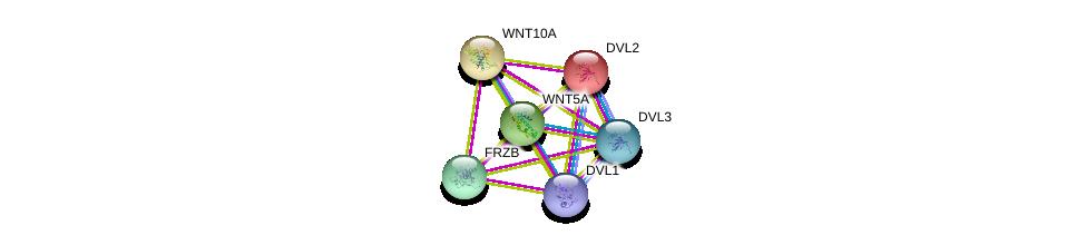 http://string-db.org/version_10/api/image/networkList?limit=0&targetmode=proteins&caller_identity=gene_cards&network_flavor=evidence&identifiers=9606.ENSP00000295113%0d%0a9606.ENSP00000005340%0d%0a9606.ENSP00000316054%0d%0a9606.ENSP00000368169%0d%0a9606.ENSP00000258411%0d%0a9606.ENSP00000264634%0d%0a
