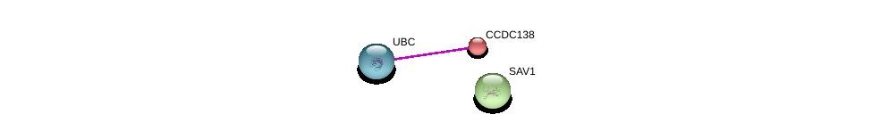 http://string-db.org/version_10/api/image/networkList?limit=0&targetmode=proteins&caller_identity=gene_cards&network_flavor=evidence&identifiers=9606.ENSP00000295124%0d%0a9606.ENSP00000344818%0d%0a9606.ENSP00000324729%0d%0a