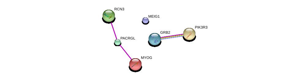 http://string-db.org/version_10/api/image/networkList?limit=0&targetmode=proteins&caller_identity=gene_cards&network_flavor=evidence&identifiers=9606.ENSP00000295290%0d%0a9606.ENSP00000270645%0d%0a9606.ENSP00000241651%0d%0a9606.ENSP00000367486%0d%0a9606.ENSP00000262741%0d%0a9606.ENSP00000339007%0d%0a