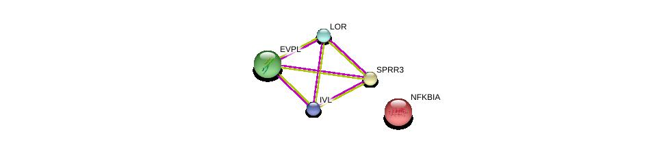 http://string-db.org/version_10/api/image/networkList?limit=0&targetmode=proteins&caller_identity=gene_cards&network_flavor=evidence&identifiers=9606.ENSP00000295367%0d%0a9606.ENSP00000357753%0d%0a9606.ENSP00000357731%0d%0a9606.ENSP00000301607%0d%0a9606.ENSP00000216797%0d%0a