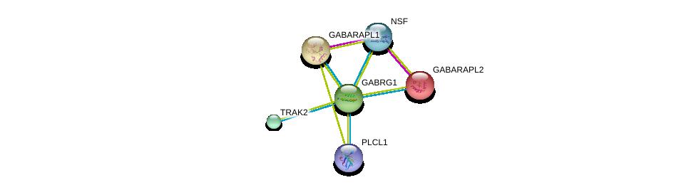 http://string-db.org/version_10/api/image/networkList?limit=0&targetmode=proteins&caller_identity=gene_cards&network_flavor=evidence&identifiers=9606.ENSP00000295452%0d%0a9606.ENSP00000266458%0d%0a9606.ENSP00000381293%0d%0a9606.ENSP00000402861%0d%0a9606.ENSP00000328875%0d%0a9606.ENSP00000037243%0d%0a