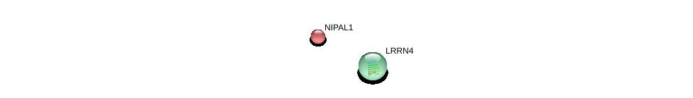 http://string-db.org/version_10/api/image/networkList?limit=0&targetmode=proteins&caller_identity=gene_cards&network_flavor=evidence&identifiers=9606.ENSP00000295461%0d%0a9606.ENSP00000368135%0d%0a