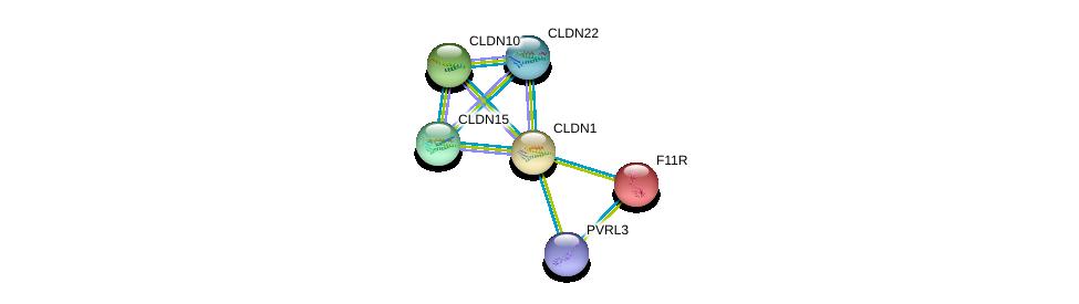 http://string-db.org/version_10/api/image/networkList?limit=0&targetmode=proteins&caller_identity=gene_cards&network_flavor=evidence&identifiers=9606.ENSP00000295522%0d%0a9606.ENSP00000289779%0d%0a9606.ENSP00000418070%0d%0a9606.ENSP00000308870%0d%0a9606.ENSP00000318113%0d%0a9606.ENSP00000299339%0d%0a
