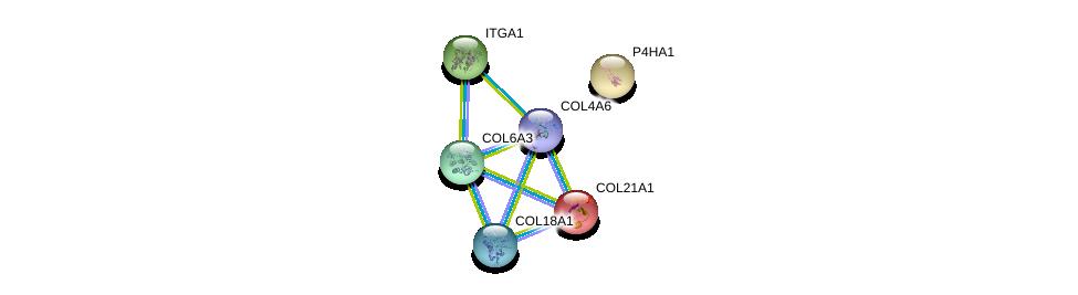 http://string-db.org/version_10/api/image/networkList?limit=0&targetmode=proteins&caller_identity=gene_cards&network_flavor=evidence&identifiers=9606.ENSP00000295550%0d%0a9606.ENSP00000282588%0d%0a9606.ENSP00000244728%0d%0a9606.ENSP00000263556%0d%0a9606.ENSP00000347665%0d%0a9606.ENSP00000361290%0d%0a