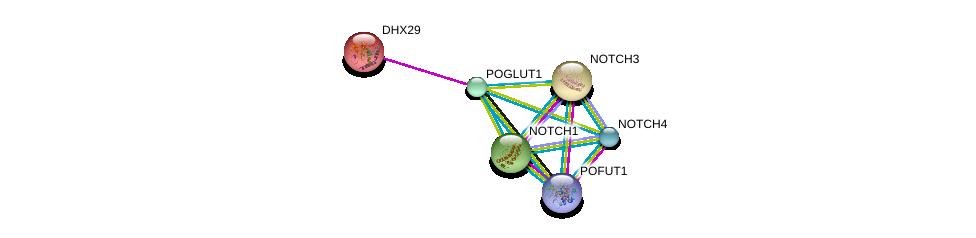 http://string-db.org/version_10/api/image/networkList?limit=0&targetmode=proteins&caller_identity=gene_cards&network_flavor=evidence&identifiers=9606.ENSP00000295588%0d%0a9606.ENSP00000364902%0d%0a9606.ENSP00000364163%0d%0a9606.ENSP00000277541%0d%0a9606.ENSP00000263388%0d%0a9606.ENSP00000251636%0d%0a