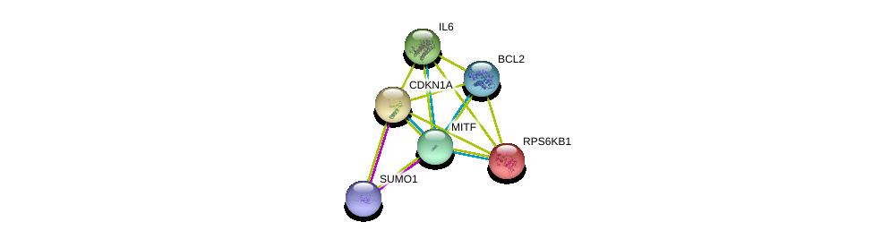 http://string-db.org/version_10/api/image/networkList?limit=0&targetmode=proteins&caller_identity=gene_cards&network_flavor=evidence&identifiers=9606.ENSP00000295600%0d%0a9606.ENSP00000376076%0d%0a9606.ENSP00000258743%0d%0a9606.ENSP00000225577%0d%0a9606.ENSP00000244741%0d%0a9606.ENSP00000329623%0d%0a