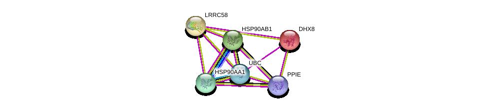 http://string-db.org/version_10/api/image/networkList?limit=0&targetmode=proteins&caller_identity=gene_cards&network_flavor=evidence&identifiers=9606.ENSP00000295628%0d%0a9606.ENSP00000344818%0d%0a9606.ENSP00000262415%0d%0a9606.ENSP00000361918%0d%0a9606.ENSP00000325875%0d%0a9606.ENSP00000335153%0d%0a