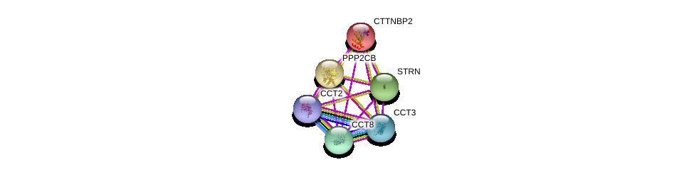 http://string-db.org/version_10/api/image/networkList?limit=0&targetmode=proteins&caller_identity=gene_cards&network_flavor=evidence&identifiers=9606.ENSP00000295688%0d%0a9606.ENSP00000160373%0d%0a9606.ENSP00000221138%0d%0a9606.ENSP00000263918%0d%0a9606.ENSP00000286788%0d%0a9606.ENSP00000299300%0d%0a