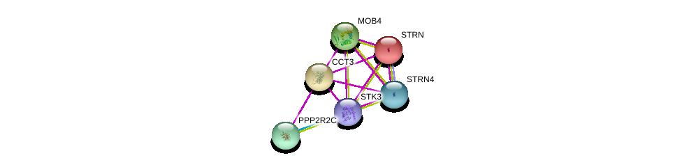 http://string-db.org/version_10/api/image/networkList?limit=0&targetmode=proteins&caller_identity=gene_cards&network_flavor=evidence&identifiers=9606.ENSP00000295688%0d%0a9606.ENSP00000315702%0d%0a9606.ENSP00000335083%0d%0a9606.ENSP00000375777%0d%0a9606.ENSP00000390500%0d%0a9606.ENSP00000263918%0d%0a