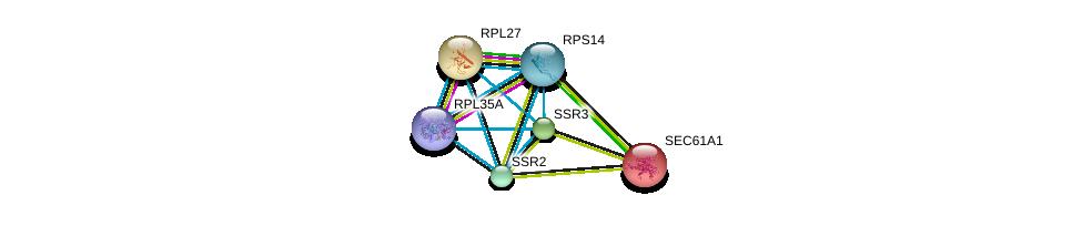 http://string-db.org/version_10/api/image/networkList?limit=0&targetmode=proteins&caller_identity=gene_cards&network_flavor=evidence&identifiers=9606.ENSP00000295702%0d%0a9606.ENSP00000265044%0d%0a9606.ENSP00000311028%0d%0a9606.ENSP00000243253%0d%0a9606.ENSP00000253788%0d%0a9606.ENSP00000393393%0d%0a