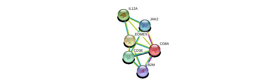 http://string-db.org/version_10/api/image/networkList?limit=0&targetmode=proteins&caller_identity=gene_cards&network_flavor=evidence&identifiers=9606.ENSP00000295743%0d%0a9606.ENSP00000283635%0d%0a9606.ENSP00000354566%0d%0a9606.ENSP00000371067%0d%0a9606.ENSP00000303231%0d%0a9606.ENSP00000452780%0d%0a