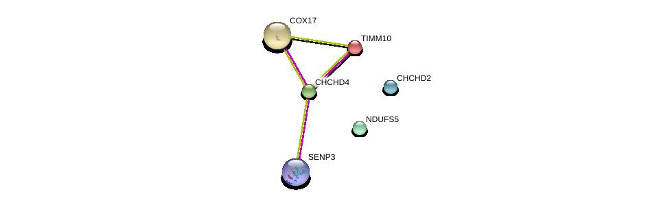 http://string-db.org/version_10/api/image/networkList?limit=0&targetmode=proteins&caller_identity=gene_cards&network_flavor=evidence&identifiers=9606.ENSP00000295767%0d%0a9606.ENSP00000378812%0d%0a9606.ENSP00000362058%0d%0a9606.ENSP00000403712%0d%0a9606.ENSP00000261070%0d%0a9606.ENSP00000257245%0d%0a