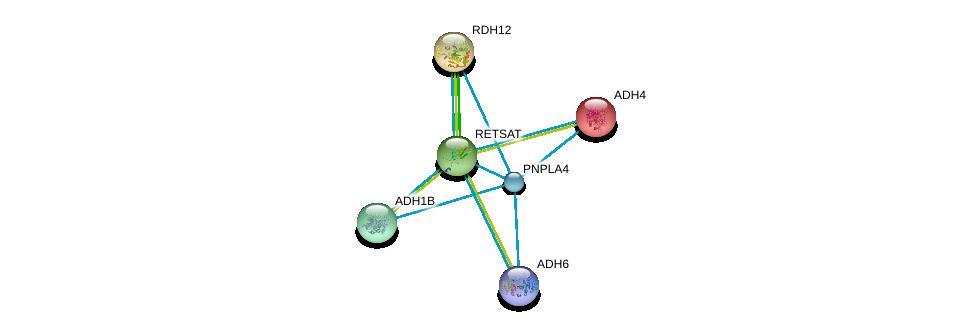 http://string-db.org/version_10/api/image/networkList?limit=0&targetmode=proteins&caller_identity=gene_cards&network_flavor=evidence&identifiers=9606.ENSP00000295802%0d%0a9606.ENSP00000378359%0d%0a9606.ENSP00000370430%0d%0a9606.ENSP00000306606%0d%0a9606.ENSP00000265512%0d%0a9606.ENSP00000267502%0d%0a