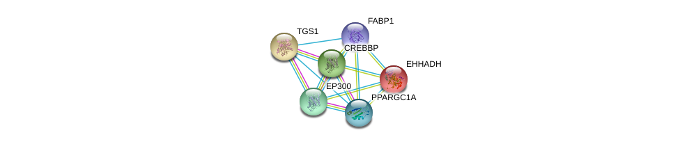 http://string-db.org/version_10/api/image/networkList?limit=0&targetmode=proteins&caller_identity=gene_cards&network_flavor=evidence&identifiers=9606.ENSP00000295834%0d%0a9606.ENSP00000231887%0d%0a9606.ENSP00000260129%0d%0a9606.ENSP00000262367%0d%0a9606.ENSP00000263253%0d%0a9606.ENSP00000264867%0d%0a