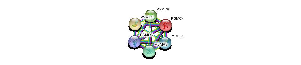 http://string-db.org/version_10/api/image/networkList?limit=0&targetmode=proteins&caller_identity=gene_cards&network_flavor=evidence&identifiers=9606.ENSP00000295901%0d%0a9606.ENSP00000157812%0d%0a9606.ENSP00000210313%0d%0a9606.ENSP00000215071%0d%0a9606.ENSP00000216455%0d%0a9606.ENSP00000216802%0d%0a