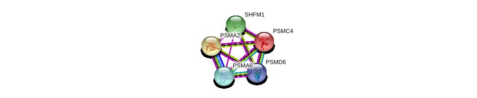 http://string-db.org/version_10/api/image/networkList?limit=0&targetmode=proteins&caller_identity=gene_cards&network_flavor=evidence&identifiers=9606.ENSP00000295901%0d%0a9606.ENSP00000157812%0d%0a9606.ENSP00000223321%0d%0a9606.ENSP00000248566%0d%0a9606.ENSP00000248566%0d%0a9606.ENSP00000261479%0d%0a
